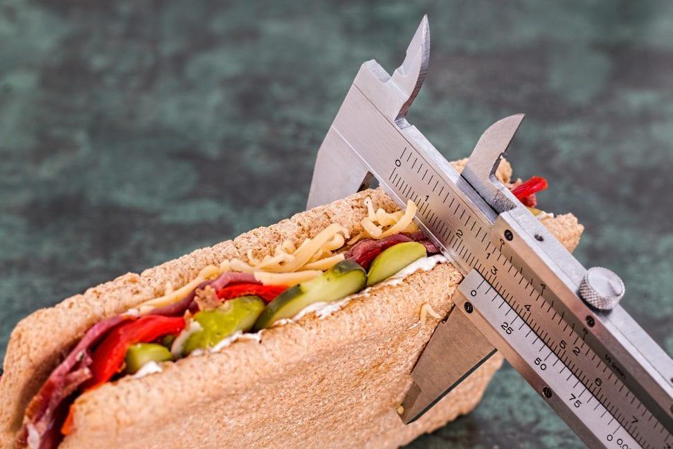 obesidad en las personas