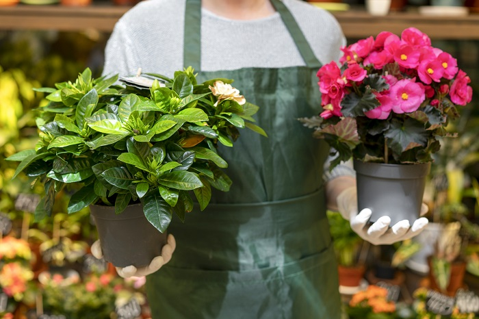 jardinero sujetando dos macetas.